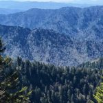 Valley News – Hiking in the Smokies for New Englanders