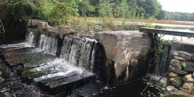 Hiking RI's Big River Management Area, site of the flood that never was