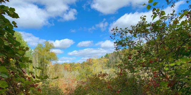 Victor Hiking Trails' newest: Helen's Way